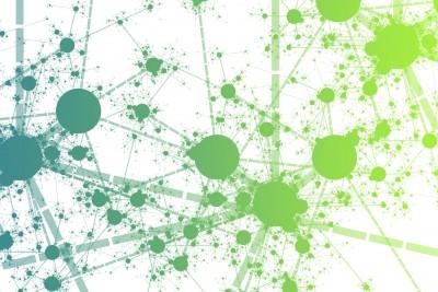 Compétences collectives et usages sociaux